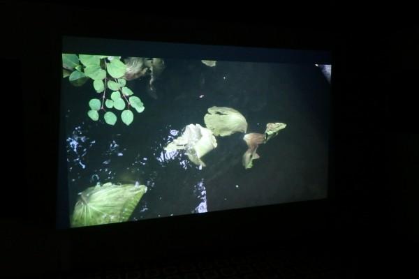 ナンダ・サーン『高瀬川の木霊』